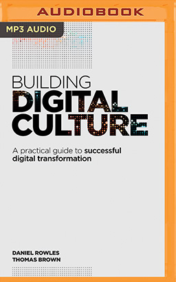 Building Digital Culture