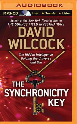 Synchronicity Key, The
