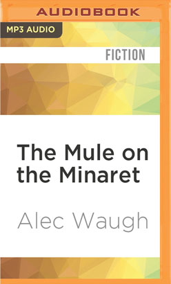 Mule on the Minaret, The