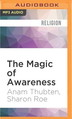Magic of Awareness, The