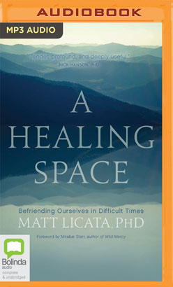 Healing Space, A