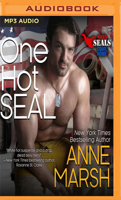 One Hot Seal