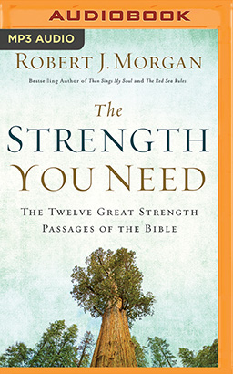 Strength You Need, The