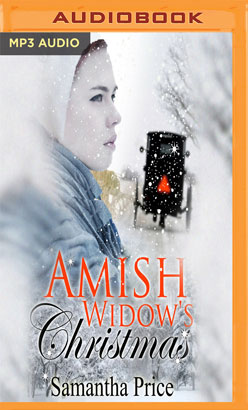 Amish Widow's Christmas