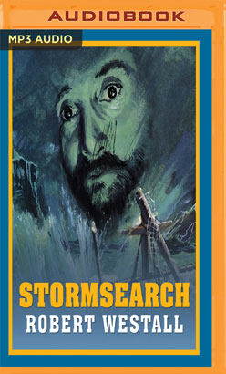 Stormsearch