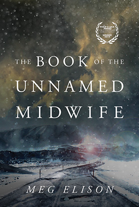 Book of the Unnamed Midwife, The