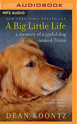 Big Little Life, A