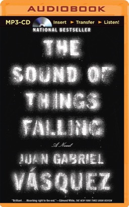 Sound of Things Falling, The