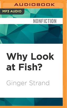 Why Look at Fish?