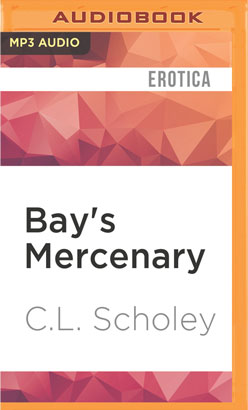 Bay's Mercenary