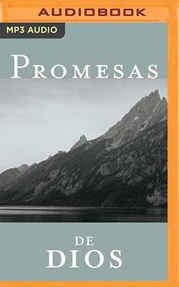 Promesas de dios para cada una de sus necesidades