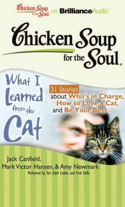 Chicken Soup for the Soul: What I Learned from the Cat - 31 Stories about Who's in Charge, How to Love a Cat, and Be Your Best