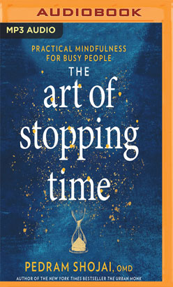 Art of Stopping Time, The