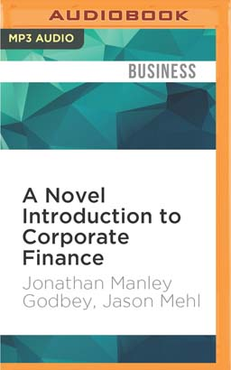 Novel Introduction to Corporate Finance, A