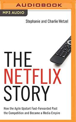 Netflix Story, The
