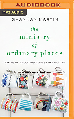 Ministry of Ordinary Places, The