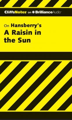 Raisin in the Sun, A