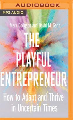 Playful Entrepreneur, The