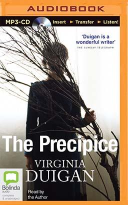 Precipice, The