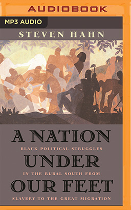 Nation Under Our Feet, A