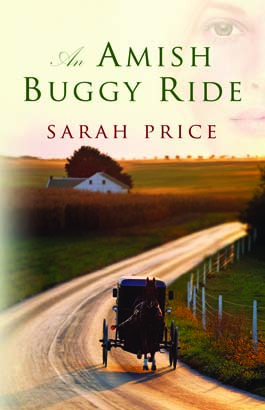 Amish Buggy Ride, An