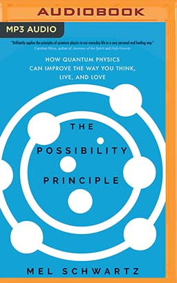 Possibility Principle, The