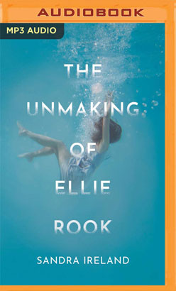 Unmaking of Ellie Rook, The